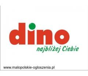 Praca w markecie, DINO Polska - Bulowice