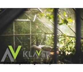 Praca w ogrodnictwie w Holandii  – bonus 90 euro - szklarnia