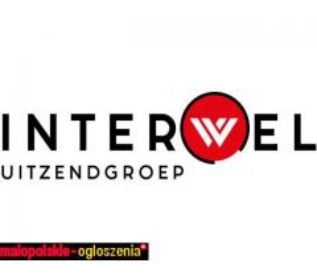PRACOWNIK FIZYCZNY (układanie sztucznej trawy) Holandia